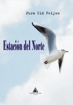 Estación del Norte, una novela de Pura Cid Feijoo
